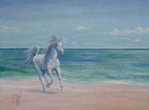 Ritratto cavallo che cavalca la bordo del mare ritratto di Violetta Viola arte ViolaV