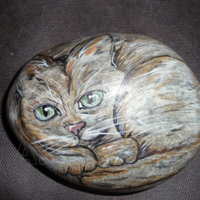 pietre dipinte ritratto di gatto