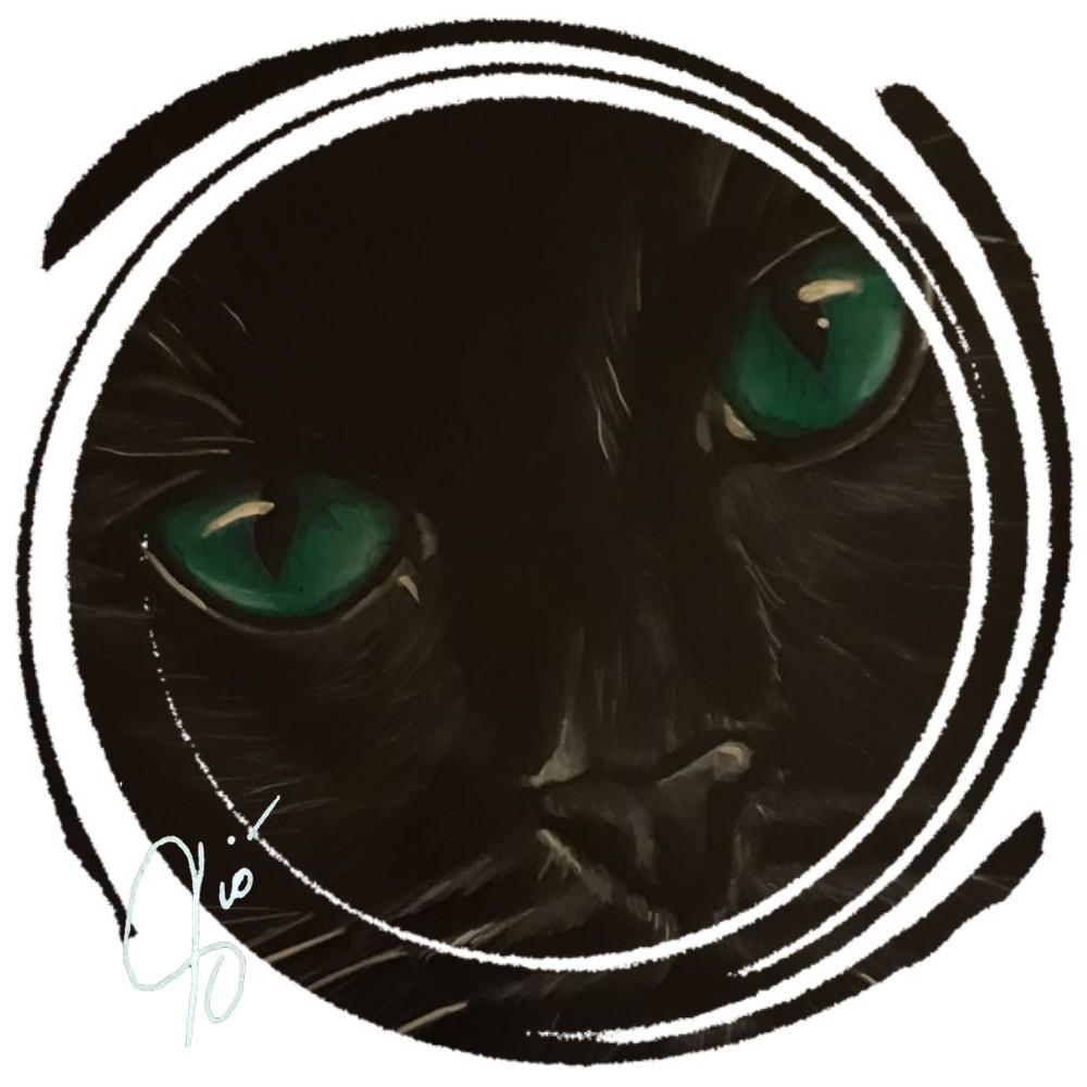 gatto nero ritratto © arte violav di violetta viola