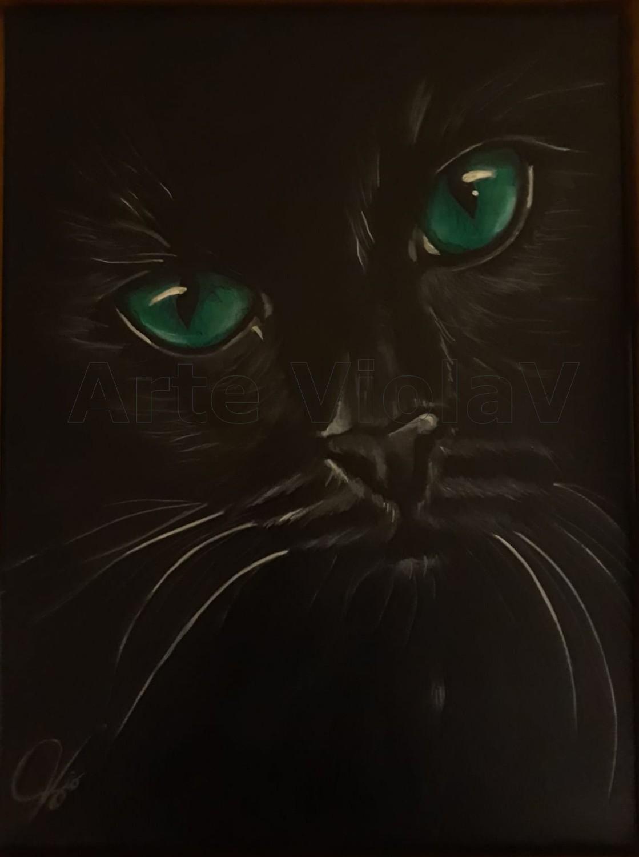 gatto nero ritratto